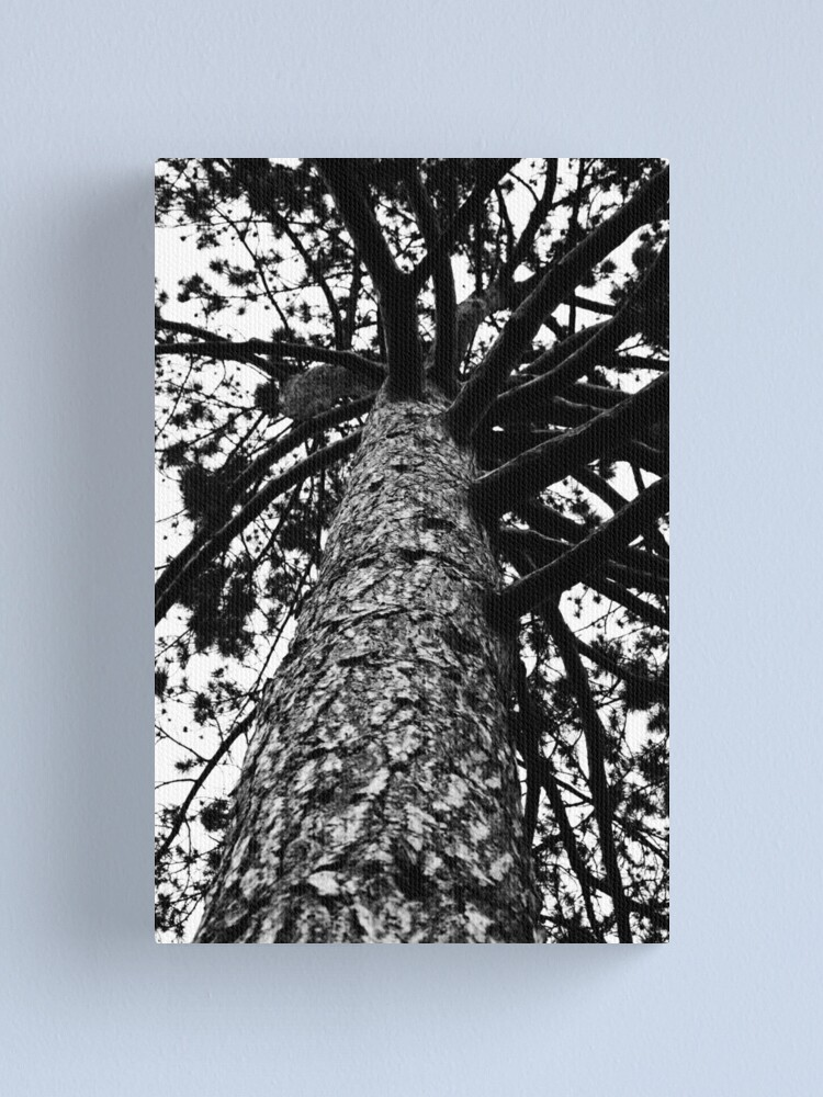 Alternate view of Monochrome Tree Canvas Print