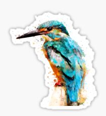 Watercolor kingfisher Sticker