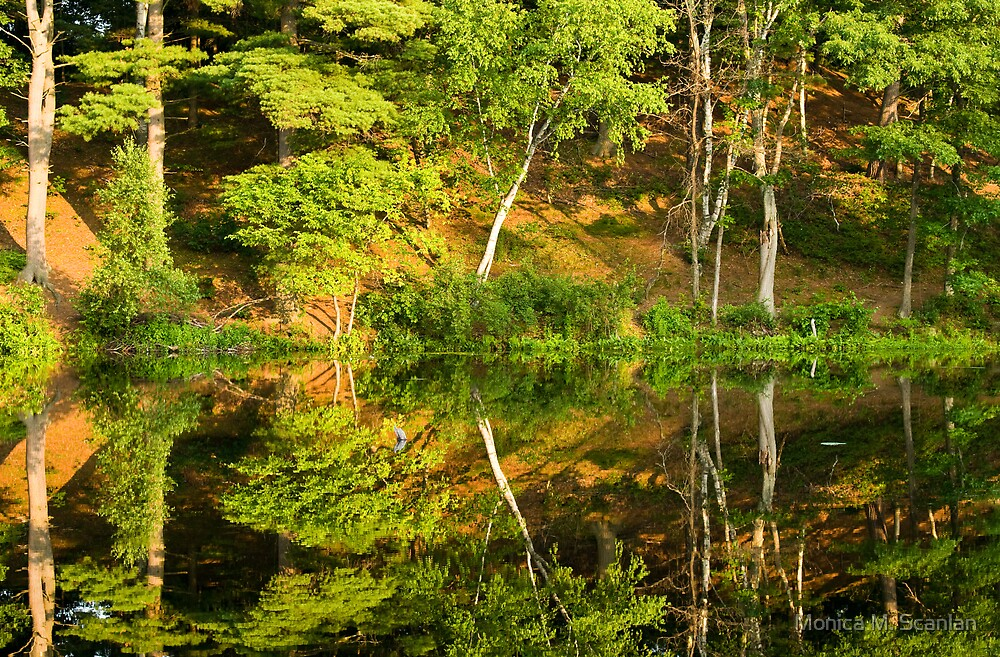 Wonderful Reflections by Monica M. Scanlan