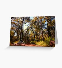 An autumn afternoon in the forest Greeting Card