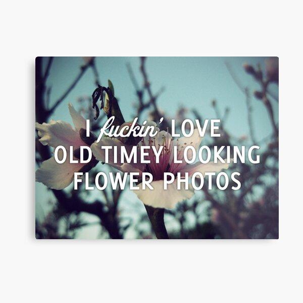 Old Timey Looking Flower Photos Metal Print
