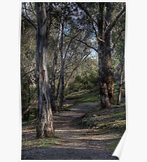 Stroll into Nature... Poster