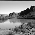 Labyrinth Canyon Utah by Bill Wetmore