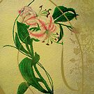 Lily by ciriva