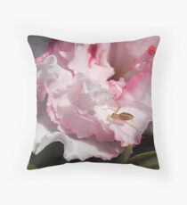 Azalea,  Pink frilly with spider Throw Pillow