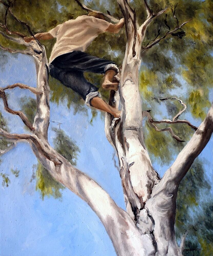 Tree Climbing by alstrangeways