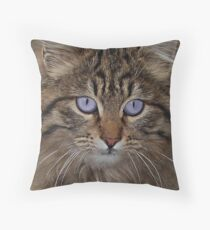 CATS 16 Throw Pillow