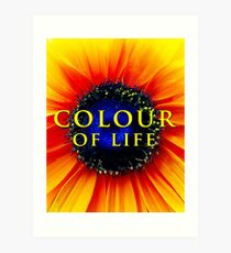 Colour of Life [cover image] Art Print