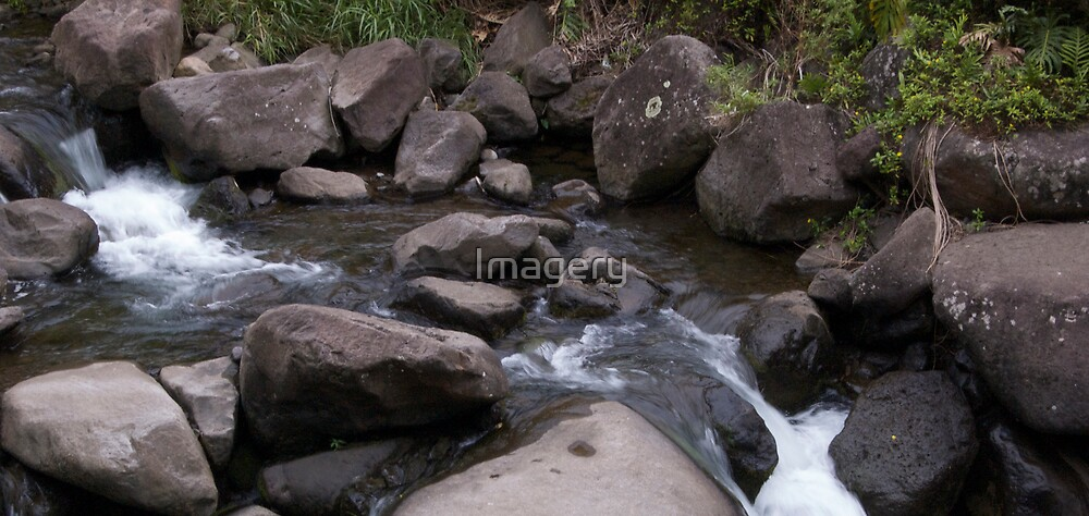 Stream at Iao Valley State Park by Imagery