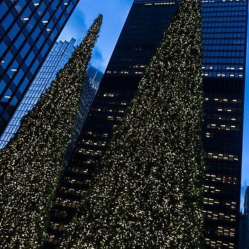 Christmas Trees Taller Than Buildings Left by GeorgiaM