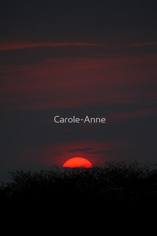 Sunset Through Smoke, Serengeti, Tanzania by Carole-Anne
