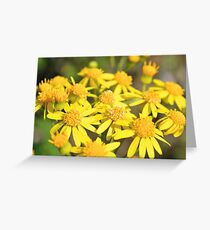 Simply Yellow Greeting Card