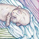 Nosy Parker (Cat on Messy Bed) by Asher Davidson