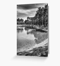 Pure Waters Greeting Card