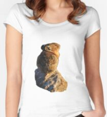 Sunset Pika Women's Fitted Scoop T-Shirt