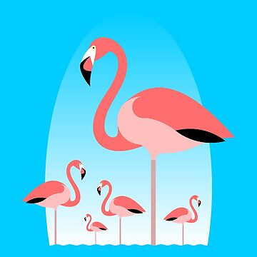 Flamingos by tudi