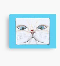 Lady Bug Kissing Kittens Nose Canvas Print