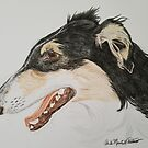 Borzoi - Russian Wolfhound by Anita Putman