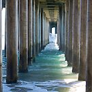 Under The Jetty by Cheryl  Lunde