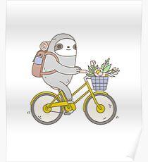 Póster Biking Sloth