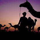 Pushkar Sunset by Valerie Rosen