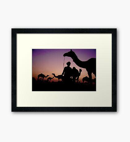 Pushkar Sunset Framed Print