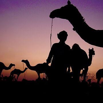 Pushkar Sunset by bareri