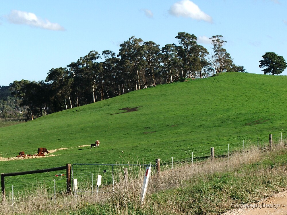 Country Hillside by ScenerybyDesign