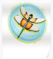 Dragonflies Insects . Graphic Desing Poster