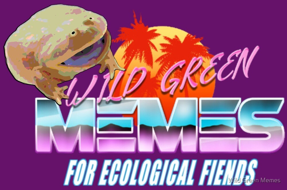 Wednesday Frog Vaporwave Logo by Wild Green Memes Store