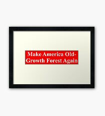 Make America Old-Growth Forest Again Framed Print