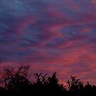 Winter sunset - Brisbane - Australia by medley