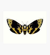 Cabeza de la Muerte Hawk Moth Lámina artística