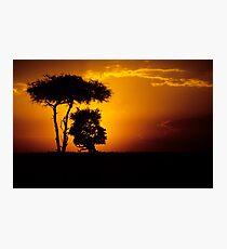 Mara sunset Photographic Print
