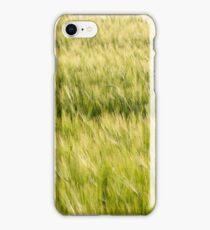 Green Barley Field Closeup iPhone Case/Skin