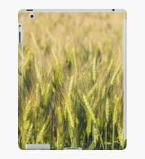 Green Wheat Closeup iPad Case/Skin