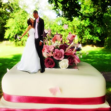 bride and groom on the cake  by moleymole