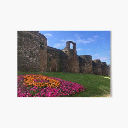 Roman Wall of Lugo Art Board Print