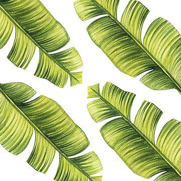 Green leaf by magdam