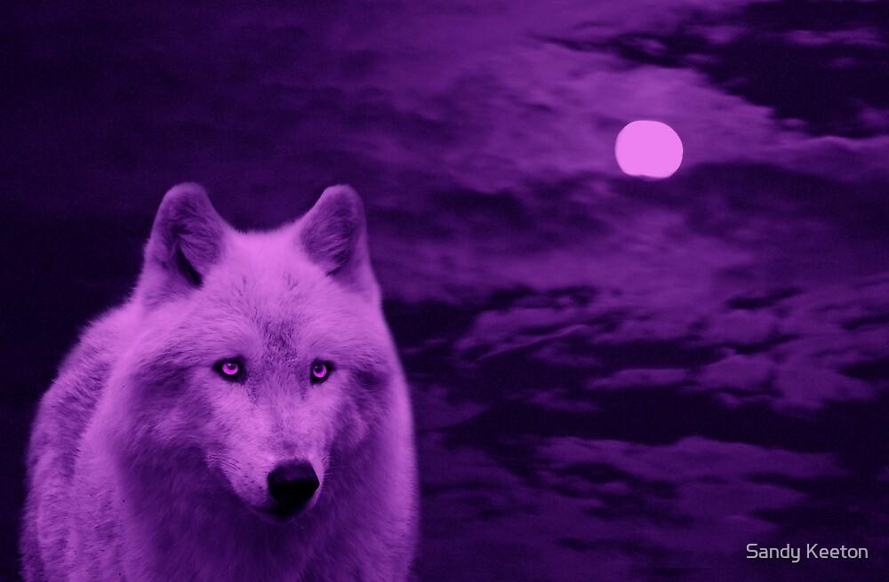 Moonlight by Sandy Keeton