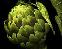 Awesome Artichoke by pat gamwell