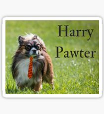 Harry Pawter, the Pup who Lived Sticker