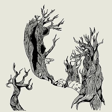 Old Trees by milicaziva