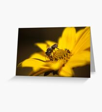 The Gatherer Greeting Card