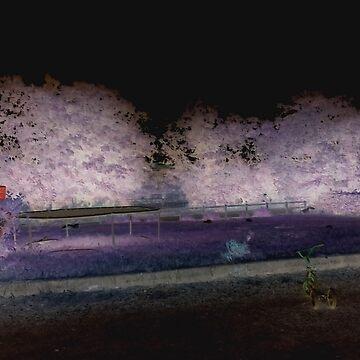 Negative Perspective Garden by Jakemc1872