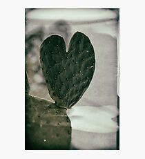 Padded Heart Photographic Print
