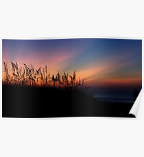 Sand Dune at Sunrise Poster