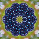 The Atala Kaleidoscope by Dawne Dunton