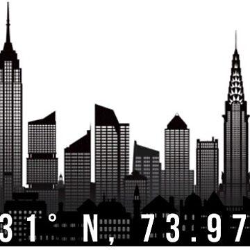Manhattan Coordinates by coleenross