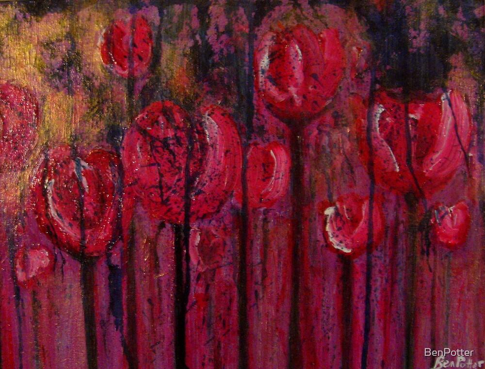 Red Radish Erosion  by BenPotter